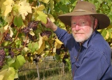 Cape Bernier Vineyard – Producer Profile