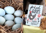 Special Easter market – one week early – Sunday 27 March